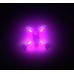Racelite LEDs for RaceWire